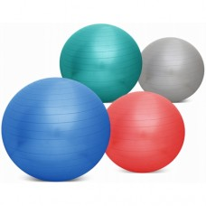Anti Burst Gym Ball with Foot Pump.